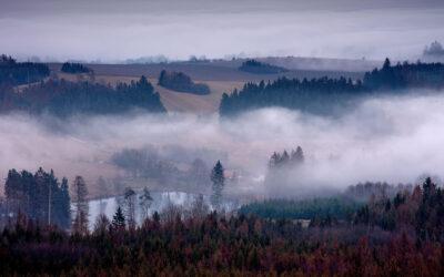 Nové fotografie D. Jelečka